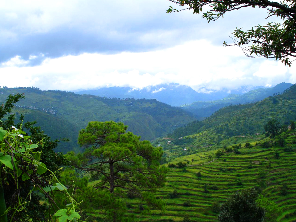 Ranikhet : places to visit in Uttarakhand